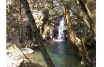 柏尾谷の滝
