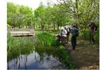 写真05 公園内のビオトープ