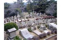 外国人墓地2020.02