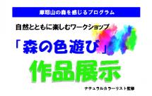 森の色遊び2020.9