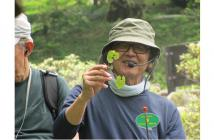 ぶらぶらガイド-min2021.3